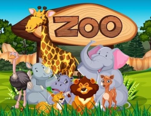 Matilda en el zoo. Mario y Lucas (6º A, 12)